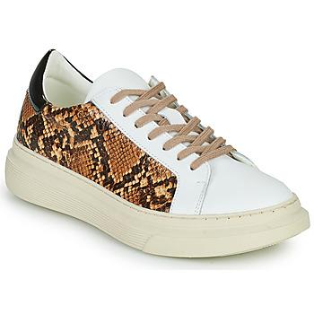 Schoenen Dames Lage sneakers Betty London PAROLE Wit