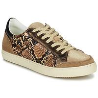 Schoenen Dames Lage sneakers Betty London PERMINA Brown