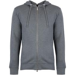 Textiel Heren Sweaters / Sweatshirts Bikkembergs  Grijs