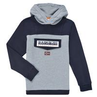 Textiel Jongens Sweaters / Sweatshirts Napapijri BURGEE Grijs / Zwart