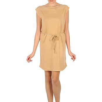 Textiel Dames Korte jurken Majestic CAMELIA Beige