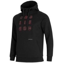 Textiel Heren Sweaters / Sweatshirts 4F BLM014 Noir