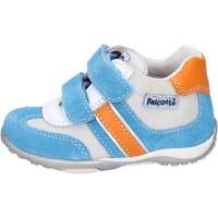 Schoenen Jongens Lage sneakers Falcotto BH196 Blauw