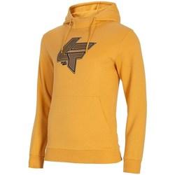 Textiel Heren Sweaters / Sweatshirts 4F BLM010 Orange