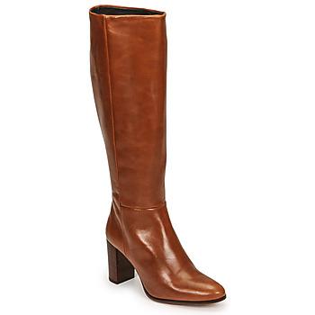 Schoenen Dames Hoge laarzen Fericelli PACHA Brown
