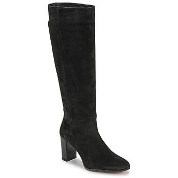 Schoenen Dames Hoge laarzen Fericelli PINO Zwart
