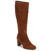 Schoenen Dames Hoge laarzen Fericelli PINO Brown