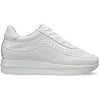 Schoenen Dames Lage sneakers Docksteps DSW951000 Wit