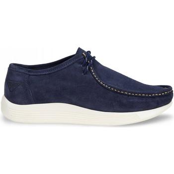 Schoenen Heren Mocassins Docksteps DSE106531 Blauw