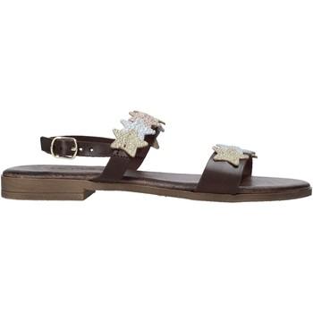 Schoenen Dames Sandalen / Open schoenen IgI&CO 7176222 Bruin