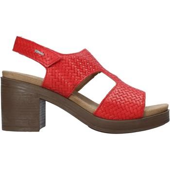 Schoenen Dames Sandalen / Open schoenen IgI&CO 7170144 Rood