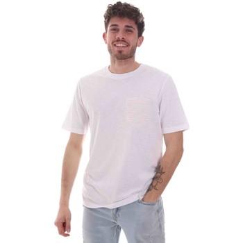 Textiel Heren T-shirts korte mouwen Sseinse TE1852SS Wit