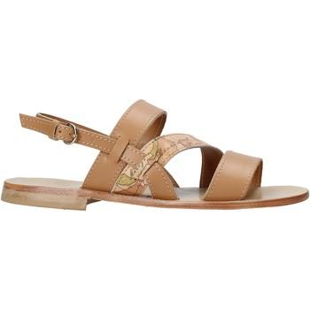 Schoenen Dames Sandalen / Open schoenen Alviero Martini E159 578A Bruin