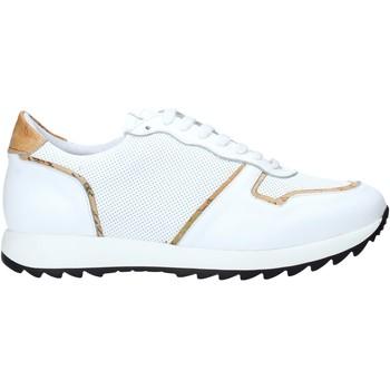 Schoenen Heren Lage sneakers Alviero Martini P170 306A Wit