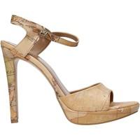 Schoenen Dames Sandalen / Open schoenen Alviero Martini E130 8391 Bruin