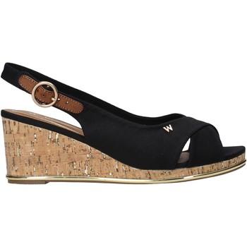 Schoenen Dames Sandalen / Open schoenen Wrangler WL11653A Zwart