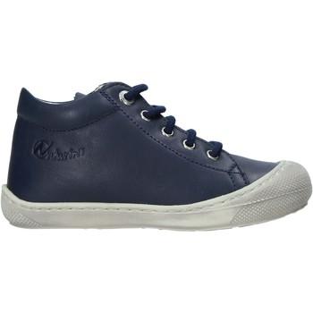 Schoenen Kinderen Lage sneakers Naturino 2012889 16 Blauw