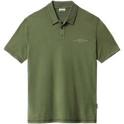 Textiel Heren Polo's korte mouwen Napapijri NP0A4F9P Groen
