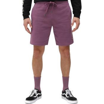Textiel Heren Korte broeken / Bermuda's Dickies DK0A4XAYB651 Paars