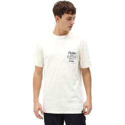 Textiel Heren T-shirts korte mouwen Dickies DK0A4X9NECR1 Wit