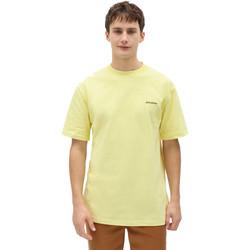 Textiel Heren T-shirts korte mouwen Dickies DK0A4X9OB541 Geel