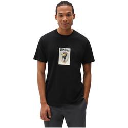 Textiel Heren T-shirts korte mouwen Dickies DK0A4X9IBLK1 Zwart