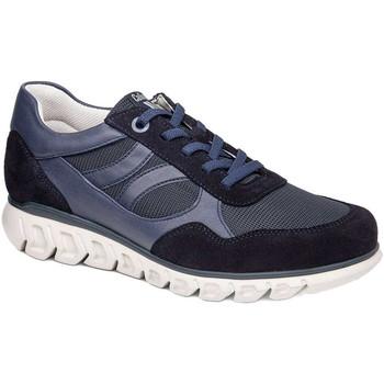 Schoenen Heren Lage sneakers CallagHan 12919 Blauw