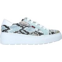 Schoenen Dames Lage sneakers CallagHan 14928 Groen