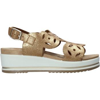Schoenen Dames Sandalen / Open schoenen Enval 7284122 Bruin
