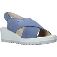 Schoenen Dames Sandalen / Open schoenen IgI&CO 5177022 Blauw