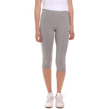 Textiel Dames Leggings Diadora 102175888 Grijs