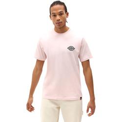 Textiel Heren T-shirts korte mouwen Dickies DK0A4XENLPI1 Roze