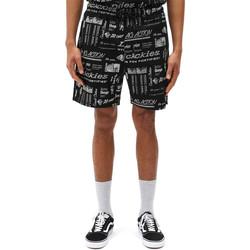 Textiel Heren Korte broeken / Bermuda's Dickies DK0A4XCGBLK1 Zwart