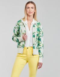 Textiel Dames Sweaters / Sweatshirts Desigual COMO Multicolour