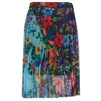 Textiel Dames Rokken Desigual BUNY Multicolour