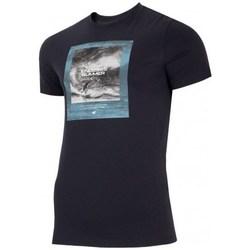 Textiel Heren T-shirts korte mouwen 4F TSM028 Noir