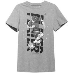 Textiel Heren T-shirts korte mouwen 4F TSM011 Gris