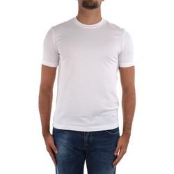 Textiel Heren T-shirts korte mouwen Cruciani CUJOSB G30 White