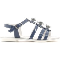 Schoenen Meisjes Sandalen / Open schoenen NeroGiardini P631370F Blauw