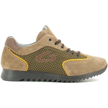 Schoenen Kinderen Lage sneakers Alberto Guardiani GK22343G Beige