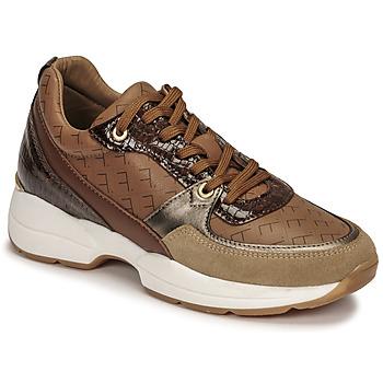 Schoenen Dames Lage sneakers Fericelli PIRYNA Beige