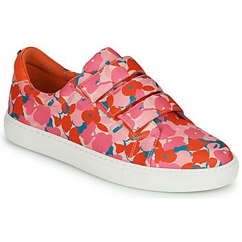 Schoenen Dames Lage sneakers Cosmo Paris HAJIA Roze / Bloem