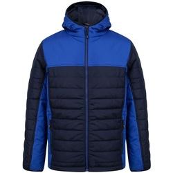 Textiel Heren Dons gevoerde jassen Finden & Hales LV660 Marine/Loyaal Blauw