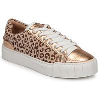 Schoenen Dames Lage sneakers Vanessa Wu LEVANTER Leopard