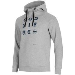 Textiel Heren Sweaters / Sweatshirts 4F BLM014 Gris