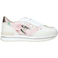 Schoenen Dames Lage sneakers Alviero Martini 9851 622A Wit