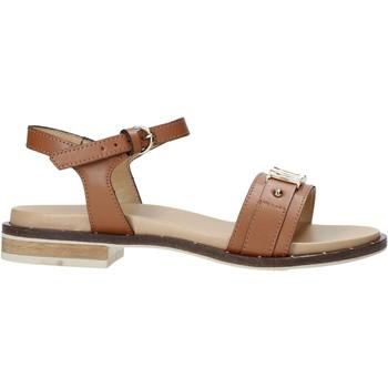 Schoenen Dames Sandalen / Open schoenen Alviero Martini E084 8578 Bruin