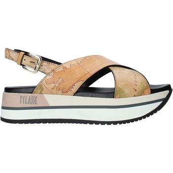 Schoenen Dames Sandalen / Open schoenen Alviero Martini E109 8391 Bruin