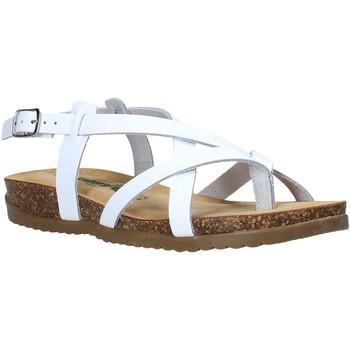 Schoenen Dames Sandalen / Open schoenen Bionatura 34A2005-I-BYCBIA Wit