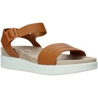 Schoenen Dames Sandalen / Open schoenen IgI&CO 5172000 Bruin